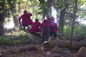 Ipswich High School pupils enjoying outdoor education