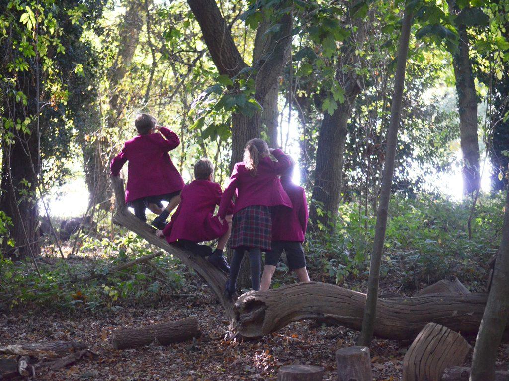 Ipswich High School pupils enjoying our outdoor education