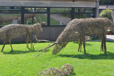 Ipswich High School Year 8 pupils' willow animal sculptures